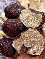 Cross section of Burgundy truffles